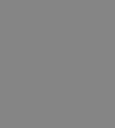 icon-grey